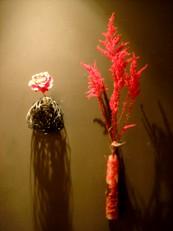 2013年10月の花02