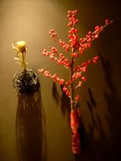2013年11月の花02