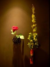 2013年12月の花02
