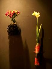 2014年1月の花02