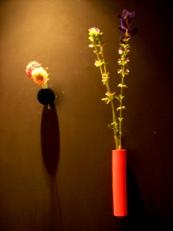 2014年2月の花02