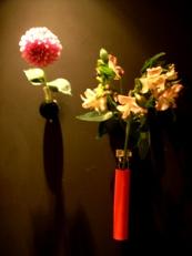 2014年4月の花02