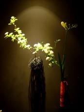 2013年1月の華02