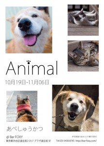 exhibition32th_animal